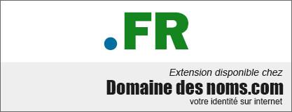 image logo nom de domaine extension .fr