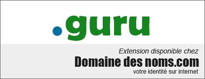 image logo nom de domaine extension .guru